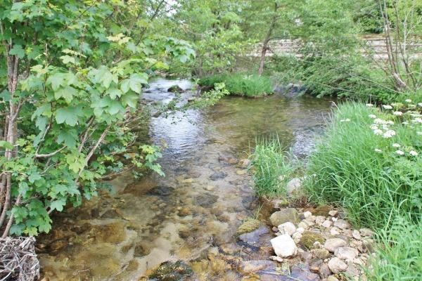 la rivière l'agout