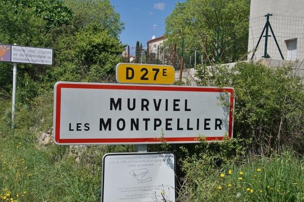 Photo Murviel-lès-Montpellier - murviel les montpellier (34570)