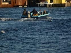 bateaux à la Pointe Courte