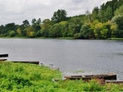 Photo paysage et monuments, Rivière - La Vienne