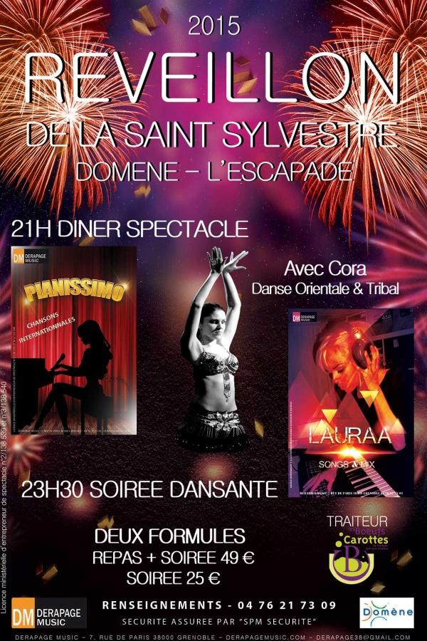 Réveillon de la Saint Sylvestre 2015 - Grenoble