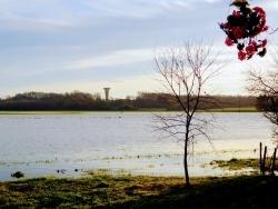 Photo paysage et monuments, Asnans-Beauvoisin - Asnans Jura. Janvier 2018.
