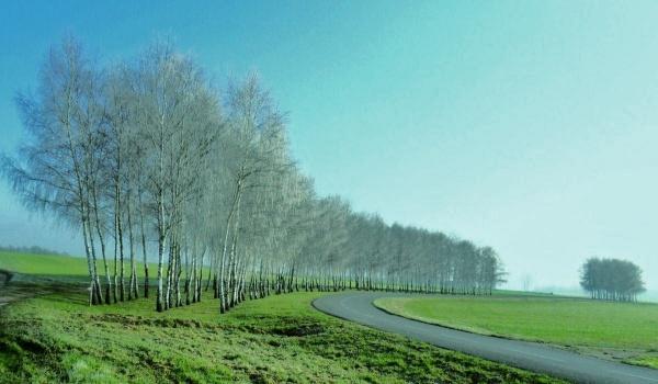 Photo Asnans-Beauvoisin - Asnans route de Pleure,Janvier 2012