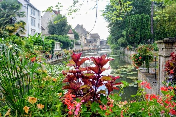 Photo Dole - Dole Jura. Canal des tanneurs Juillet 2019.