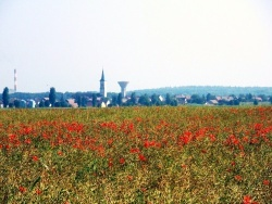 Photo paysage et monuments, Tavaux - Tavaux Jura-Juin 2013.
