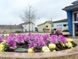 Photo paysage et monuments, Tavaux - Tavaux Jura-La Mulotte-Mars 2014.