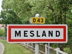 Photo de Mesland