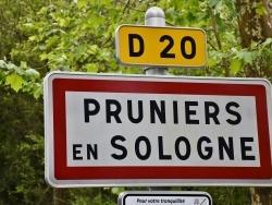 Photo paysage et monuments, Pruniers-en-Sologne - pruniers en sologne (41200)