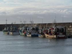 Photo paysage et monuments, Pornic - port de pêche