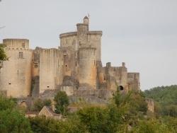 Photo paysage et monuments, Fumel - CHATEAU DE BONAGUIL