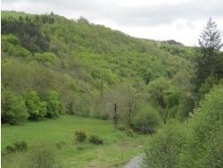 Photo paysage et monuments, Saint-Léger-de-Peyre - Saint-Léger-de-Peyre, vue champêtre