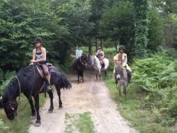 Photo paysage et monuments, La Haye-du-Puits - Randonnées, animations, montées et attelées avec chevaux et ânes
