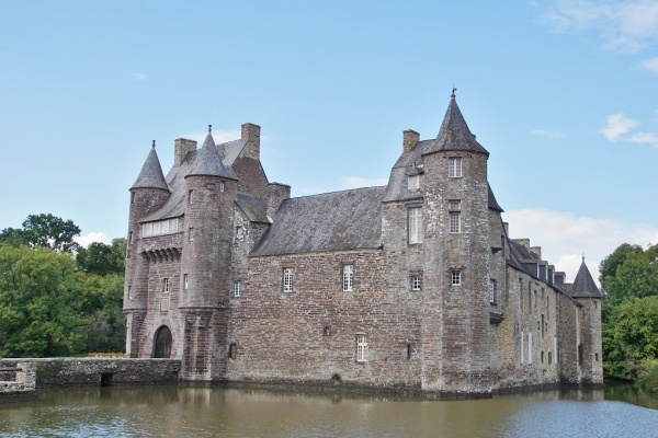Trecesson le château