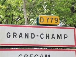 Photo de Grand-Champ