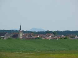 Photo paysage et monuments, Mittersheim - fenaison