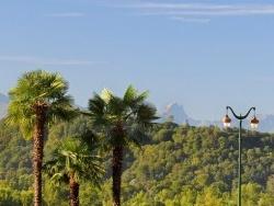 Photo faune et flore, Pau - Pau et le Pic d'Any que l'on voit au loin!