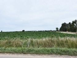 Photo paysage et monuments, Crochte - La Campagne