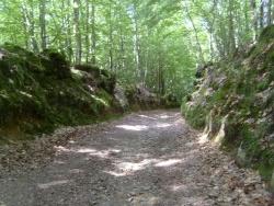 Photo paysage et monuments, Saint-Aubert-sur-Orne - la trousserie
