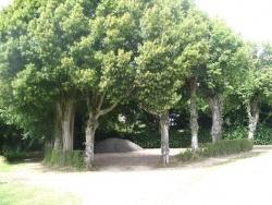 """Photo paysage et monuments, Saint-Gervais-des-Sablons - """"le friche"""""""