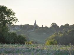 Photo paysage et monuments, Saint-Jean-de-la-Forêt - Saint Jean de la Forêt