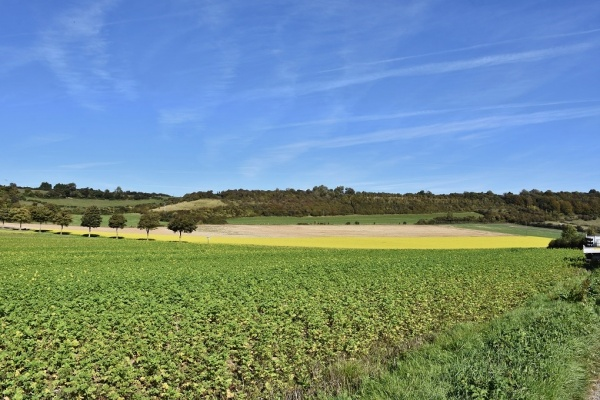 Photo Boursin - la Campagne