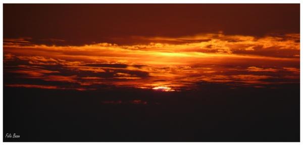 Coucher de soleil en baie d'Authie