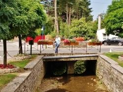 Photo paysage et monuments, Wirwignes - Ruisseau de la Haute-Faude