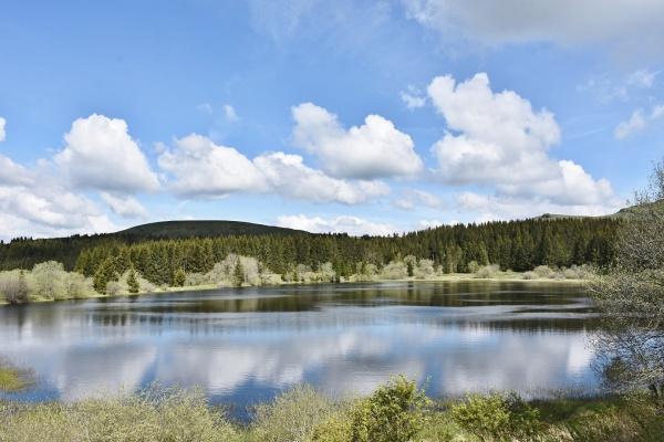 Photo Espinchal - la Rivière