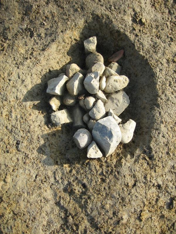fouilles archéo - Domaine St John à Billère