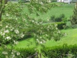 Photo paysage et monuments, Larceveau-Arros-Cibits - vue du quartier xaharrah