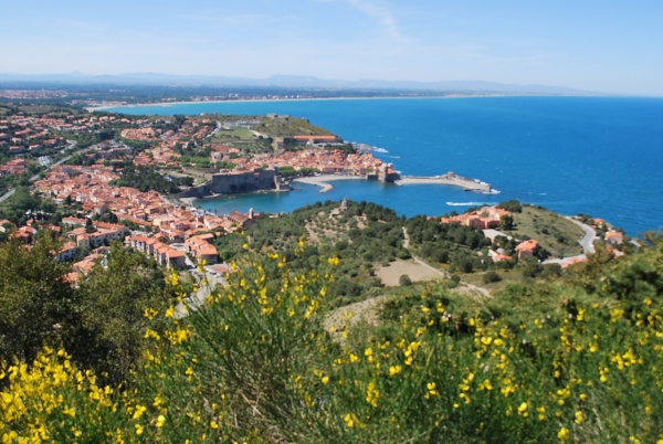 Photo Collioure - VUE SUR COLLIOURE