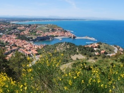 Photo paysage et monuments, Collioure - VUE SUR COLLIOURE