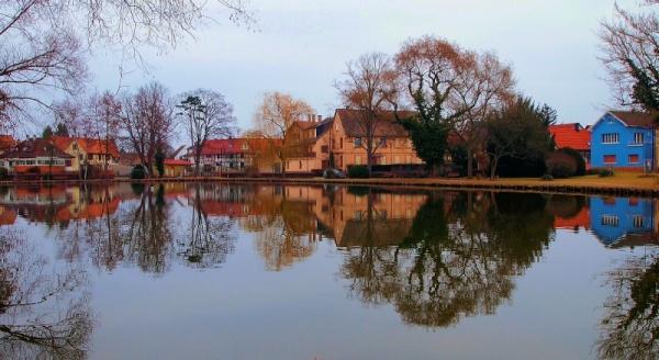 Photo Erstein - Miroir à l'étang d'Erstein