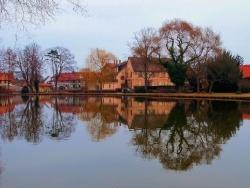Erstein - Miroir à l'étang d'Erstein