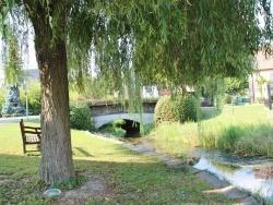 Photo paysage et monuments, Algolsheim - Riviere