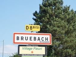 Photo de Bruebach