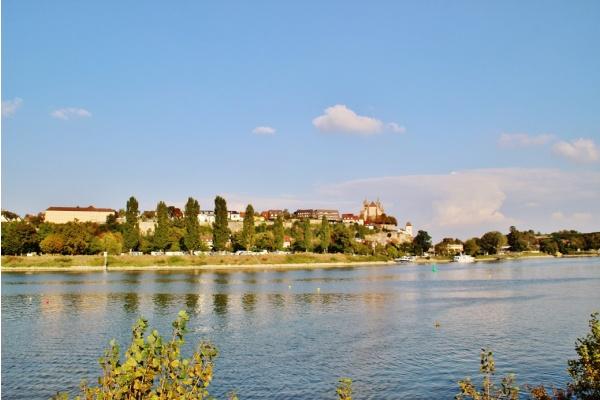 Photo Vogelgrun - Le Rhin