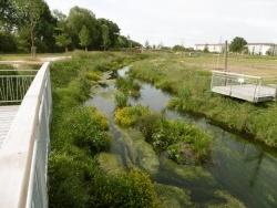 Photo faune et flore, Wittenheim - parc du rabbargala