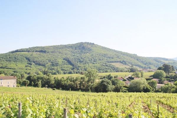 Photo Juliénas - le village