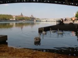 Photo paysage et monuments, Lyon - Sous le pont de L'Université