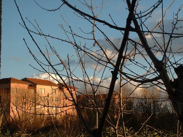 Photo Vaulx-en-Velin - Grande Cité Tase