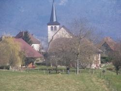 Photo paysage et monuments, Dullin - jonquilles