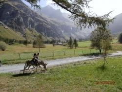 Photo paysage et monuments, Peisey-Nancroix - Fond de Vallée - Rosuel