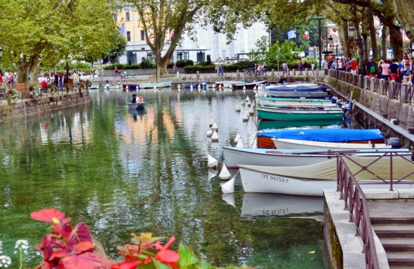 Photo Annecy - Annecy 74-Vieille ville.Août 2014.Le Thiou.2.