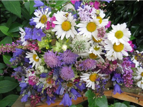 Photo Seythenex , Quoi de plus beau qu\u0027un bouquet de fleurs des champs ?