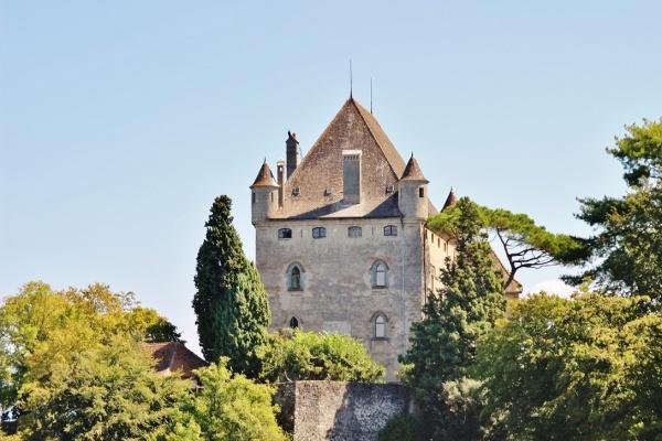 Photo Yvoire - Le Château