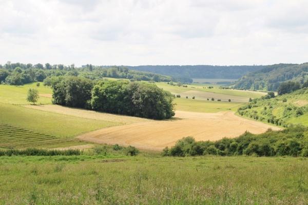 Photo Les Grandes-Ventes - le village