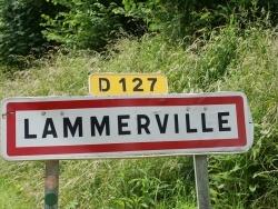 Photo de Lammerville
