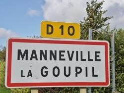 Photo de Manneville-la-Goupil