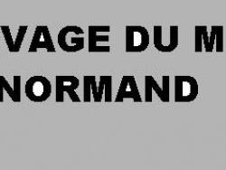 Photo faune et flore, Neuville-Ferrières - ELEVAGE DE BERGERS ALLEMANDS